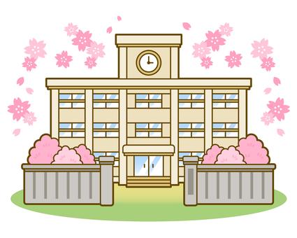 School_College 02_ Spring