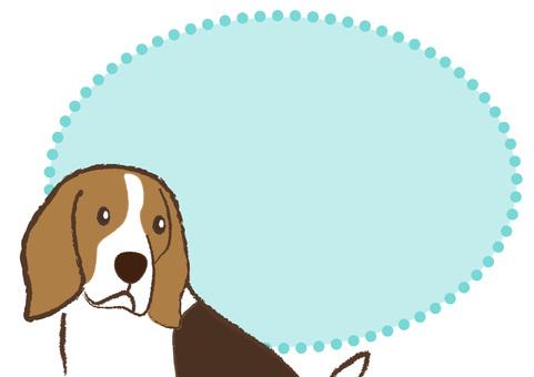 dog_ Beagle dog 15