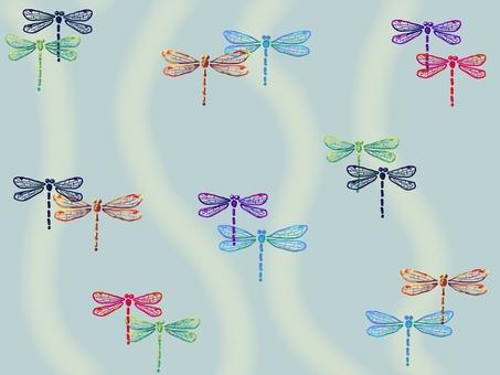 Goshiki dragonfly