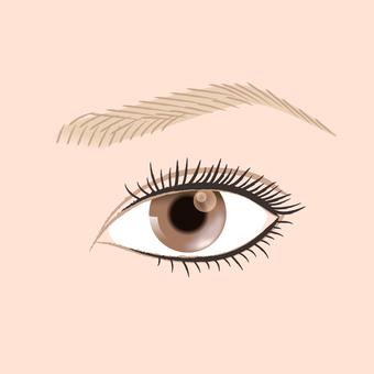 Make up _ eye up