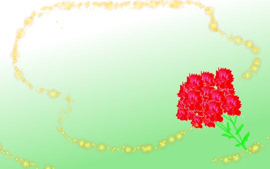 Carnation frame 3
