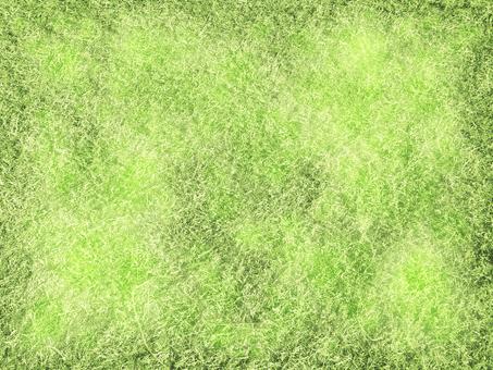 Shiny grass 160430