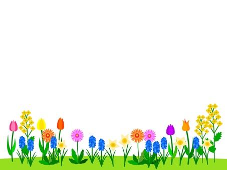Spring flowers flower garden frame