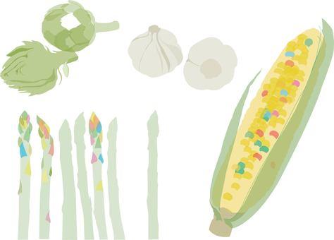 Organic vegetable illustration