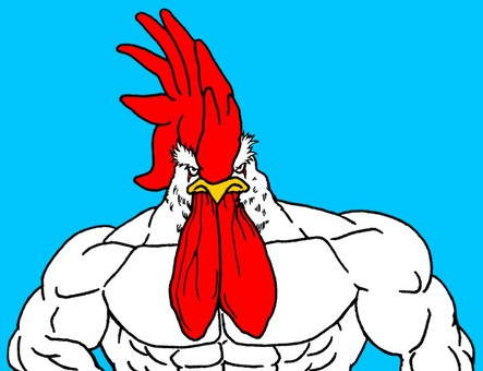 Macho chicken