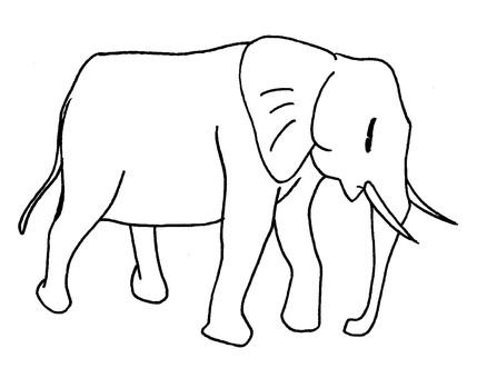 코끼리 착색 용