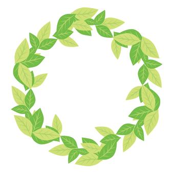 グリーンのフレーム01
