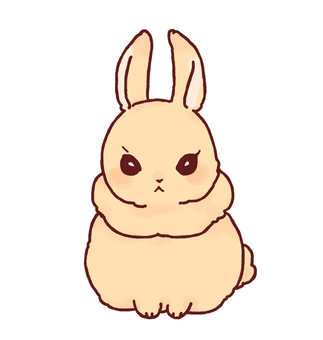 Rabbit (Netherland Dwarf)