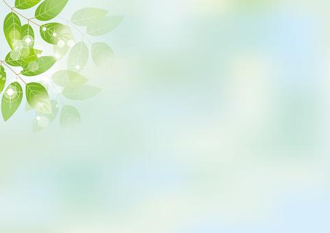 Glittering leaves & sky 3