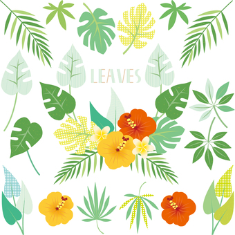 Leaf parts 03
