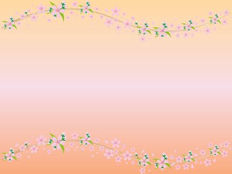 Sakura -28-16 - Background