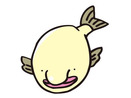 Mysterious deep sea fish