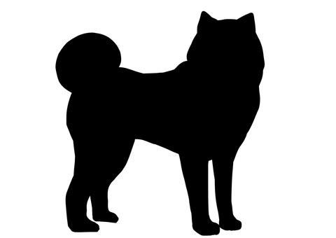 Akita dog silhouette