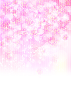 벚꽃의 꽃 134
