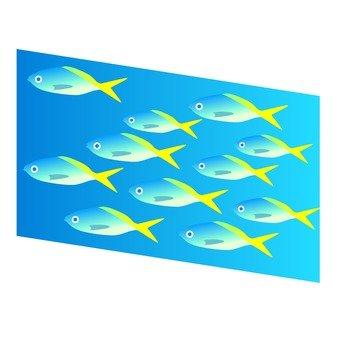 Flock of tropical fish