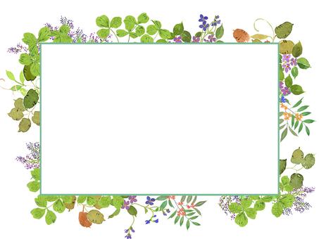 Frame of the flower