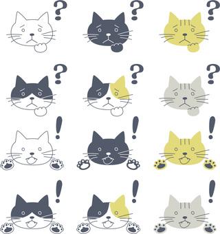 Cat_問題和解決方案