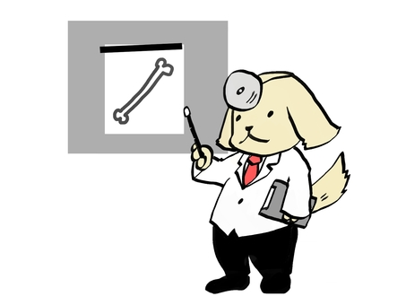 Dog's doctor