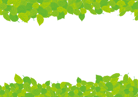 Leaf frame 3