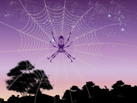 Starry sky and spider web 2