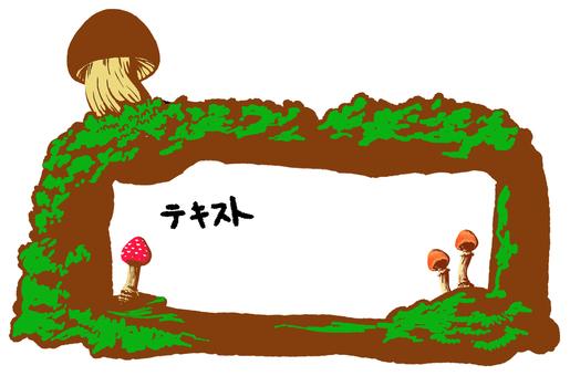 蘑菇框架水平的白色背景