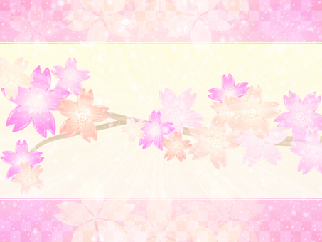 Cherry blossom background 16