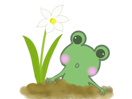 Illustration of a frog awakened in the spring