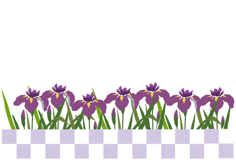 Ayame violet frame
