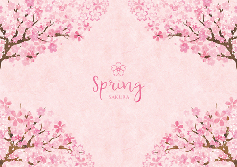 Spring background frame 027 Sakura watercolor paper