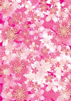 Sakura no Hana 173