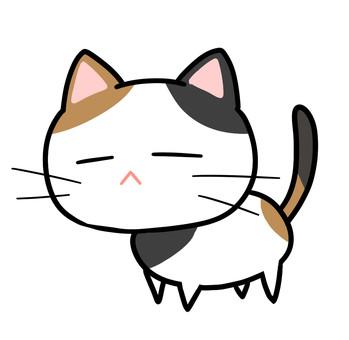 San Mao cat _ detail