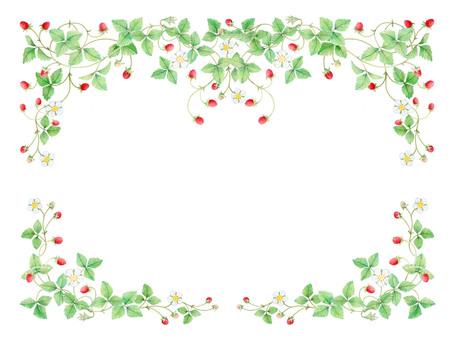 Wild strawberry decorations ★ 0025-W