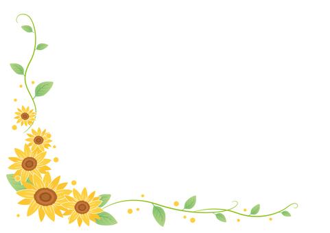 Summer material 001 Sunflower frame
