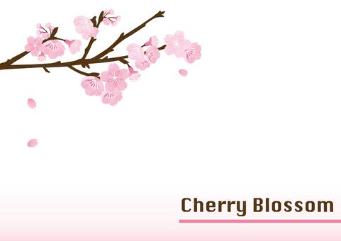 벚꽃 배경 프레임