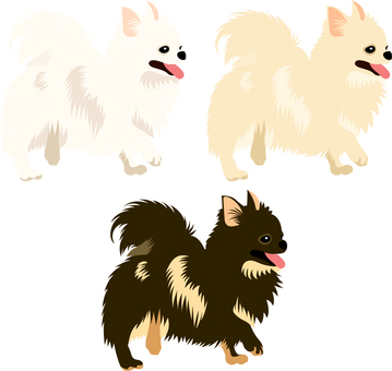 Chihuahua icon set 4
