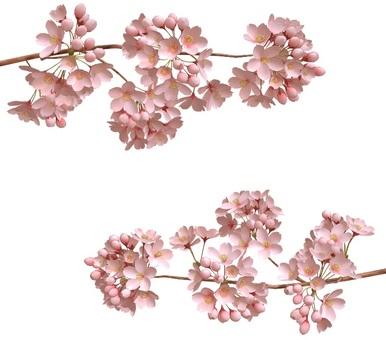 벚꽃 프레임 1