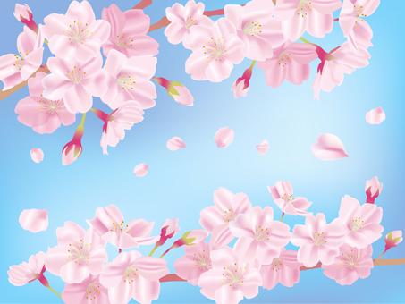 Spring 02