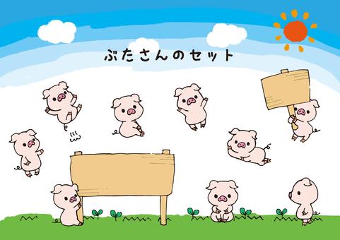 돼지 씨의 세트