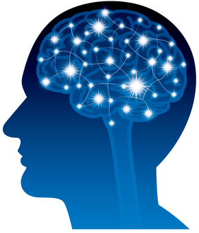 脳|シルエット イラストの無料ダウンロードサイト「シルエットAC」