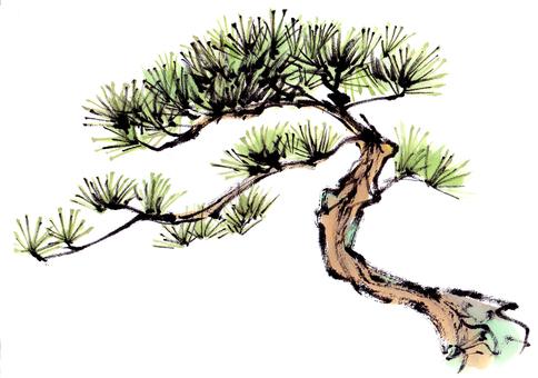 "Pine ""Handwritten material"""
