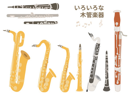 [Music] Illustration set of various woodwind instruments