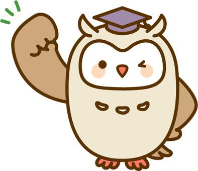 Guts pose owl teacher