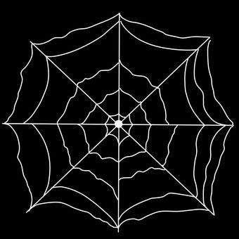 Spider web nest revealing