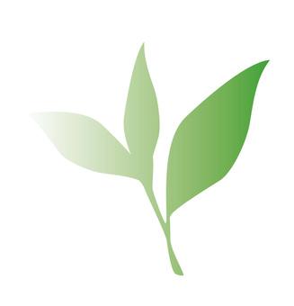 차잎 (그라데이션) 2