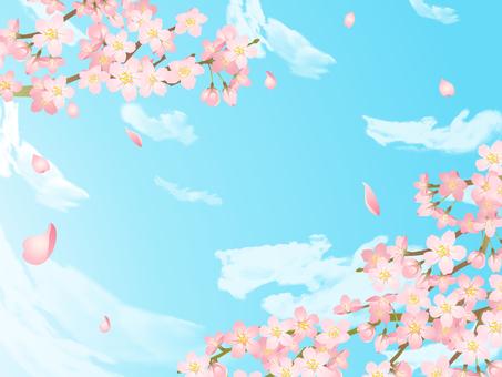 櫻花框架03 /手寫藍天雲