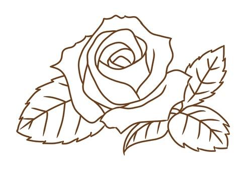 장미 꽃 (선화)