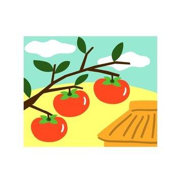 Persimmon icon 1