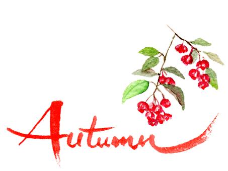 autumn和文字と真弓