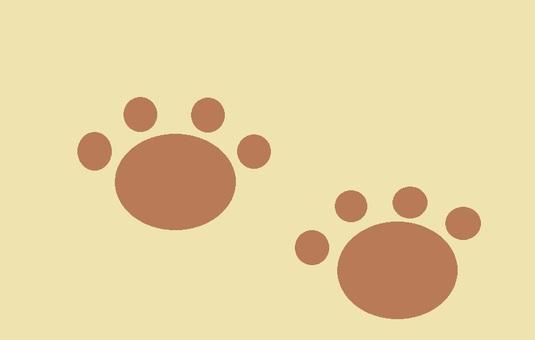 Footprint o