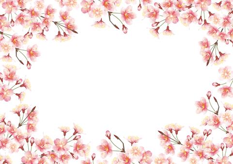 Sakura frame all directions